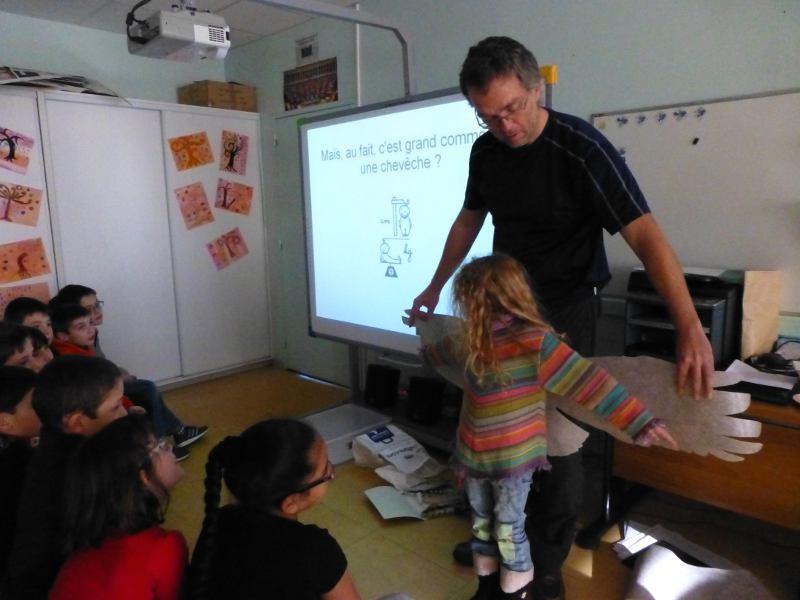 Animation Chevêche avec utilisation des outils pédagogiques rapaces