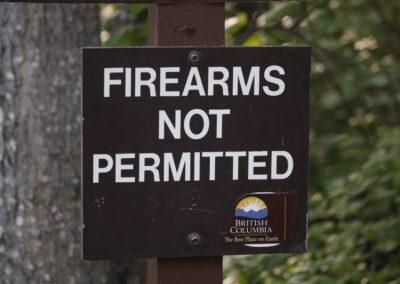 Armes à feu interdites