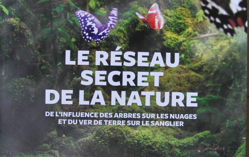 """e """"Le réseau secret de la nature"""""""